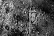 Muddy Footprints PS